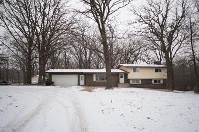 Long Prairie Single Family Home For Sale: 1010 6th Street SE