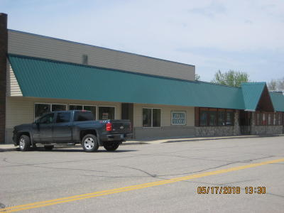 Douglas County Commercial For Sale: 233 Main Street