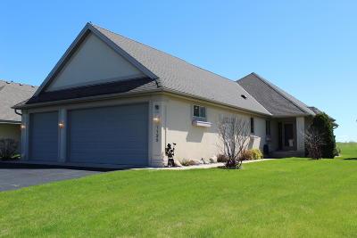 Douglas County Condo/Townhouse For Sale: 1139 E Lake Geneva Road NE