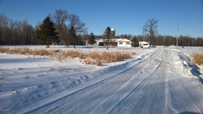 Todd County Single Family Home For Sale: 60051 Mn-210