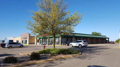 Douglas County Commercial For Sale: 2510 Highway 29 S