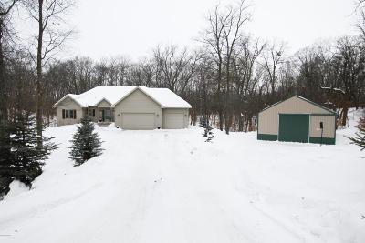 Alexandria MN Single Family Home For Sale: $389,900