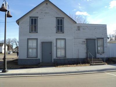 Douglas County Commercial For Sale: 46 Main Street E