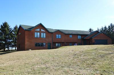 Alexandria Single Family Home For Sale: 770 Woodsmen Drive NE