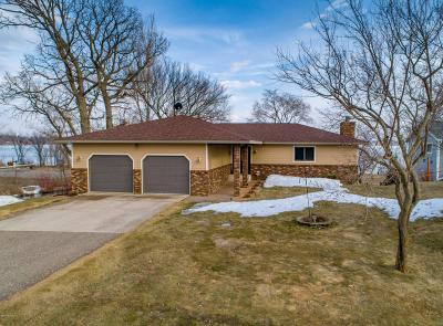 Alexandria Single Family Home For Sale: 610 Yanda Drive SE