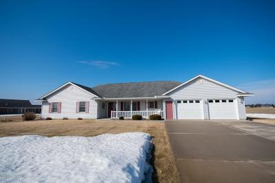Sauk Centre MN Single Family Home For Sale: $275,000