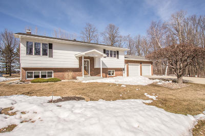 Douglas County Single Family Home For Sale: 4577 E Lake Mary Road SW