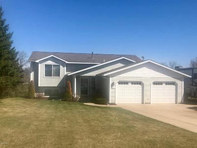 Douglas County Single Family Home For Sale: 3936 Sunny Brook Drive NW