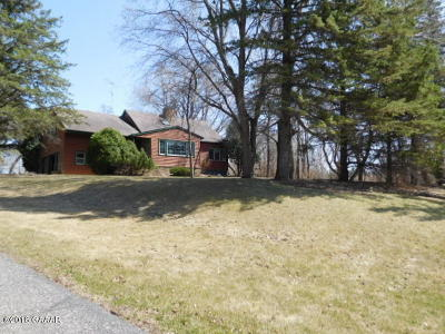 Otter Tail County Single Family Home For Sale: 24128 County Hwy 27