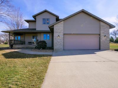 Alexandria Single Family Home For Sale: 3900 Latoka View Lane SW