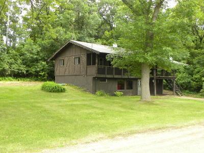 Douglas County Single Family Home For Sale: 3407 E Lake Victoria Road SE
