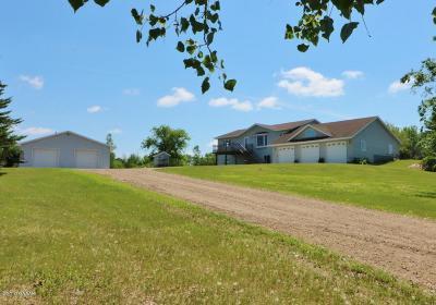 Alexandria Single Family Home For Sale: 831 Eldo Lane SW