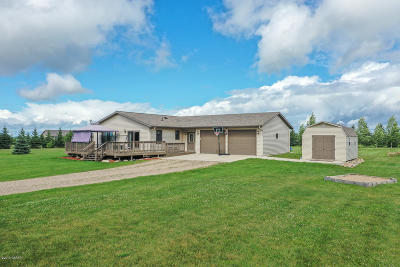 Alexandria Single Family Home For Sale: 4143 Rural Oaks Drive SE