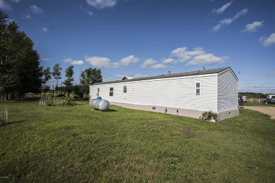 Todd County Single Family Home Pending: 19016 County 38