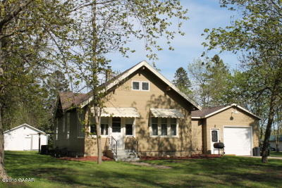 Otter Tail County Single Family Home For Sale: 317 S Douglas Avenue