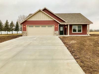 Douglas County Condo/Townhouse For Sale: 4502 Jessie View Drive SE