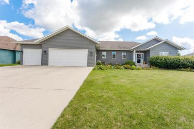 Douglas County Single Family Home For Sale: 812 Anderson Way