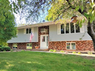 Douglas County Single Family Home For Sale: 209 2nd Street W