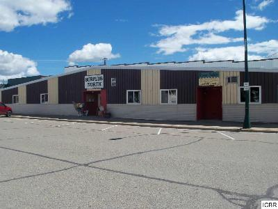Deer River MN Commercial Sold: $54,999
