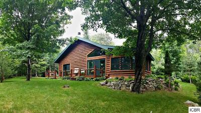 Bigfork MN Single Family Home For Sale: $314,900