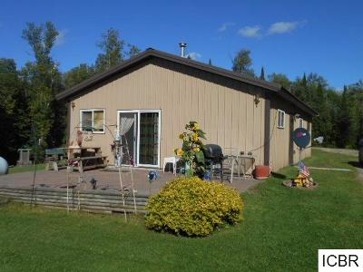 Itasca County Single Family Home For Sale: 43351 County Rd 333