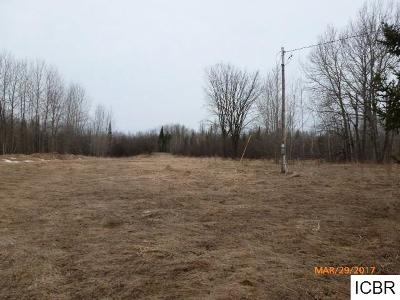 Chisholm, Hibbing Residential Lots & Land For Sale: 1907 Danahy Rd