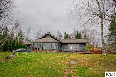 Grand Rapids Single Family Home For Sale: 19498 Ruff Shores Rd