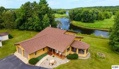 Grand Rapids Single Family Home For Sale: 21839 River Ridge Rd