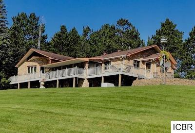 Itasca County Single Family Home For Sale: 37167 N Bass Lake Rd