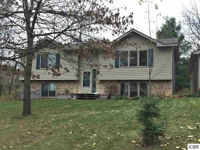 Grand Rapids MN Single Family Home For Sale: $183,900