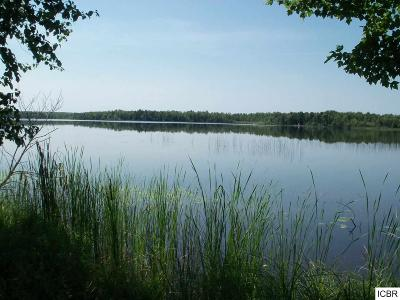 Nashwauk MN Residential Lots & Land For Sale: $289,000