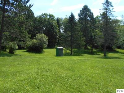 Itasca County Single Family Home For Sale: 1811 Horseshoe Lake Rd