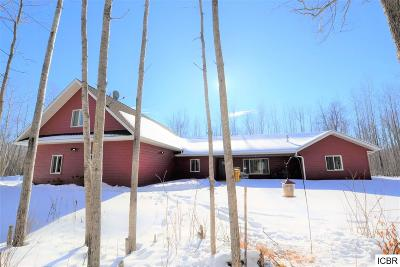 Grand Rapids Single Family Home For Sale: 34467 Gama Beach Rd