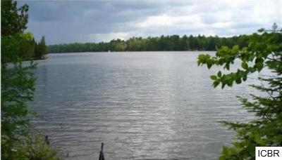 Itasca County Residential Lots & Land For Sale: 999 Horseshoe Lake Rd
