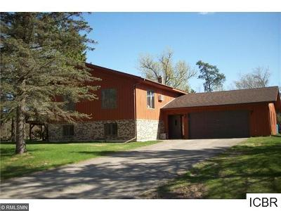 Single Family Home For Sale: 409 SE Dale Dr