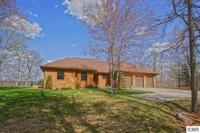 Grand Rapids Single Family Home For Sale: 1671 Isleview Rd