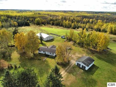 Itasca County Single Family Home For Sale: 29595 County Rd 340