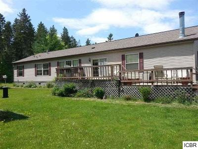 Single Family Home For Sale: 31890 Jane Ln