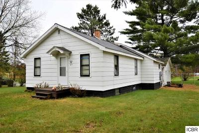 Grand Rapids Single Family Home For Sale: 804 NW 8th Ave