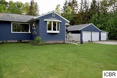 Grand Rapids Single Family Home For Sale: 33239 Crystal Springs Rd