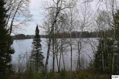 Residential Lots & Land For Sale: 49712 S Club Lake Rd