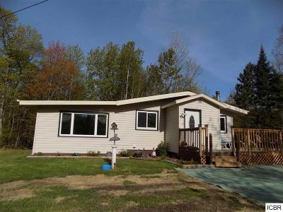 Grand Rapids Single Family Home For Sale: 18919 Wendigo Park Rd