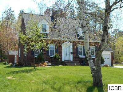Grand Rapids Single Family Home For Sale: 20 SW 1st St