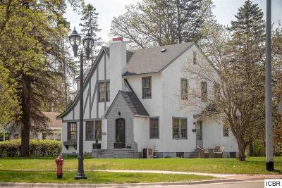 Grand Rapids Single Family Home For Sale: 1033 NW 1st Ave