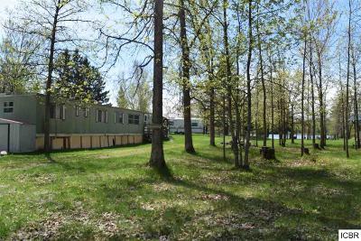 Single Family Home For Sale: 33908 N Shamrock Rd