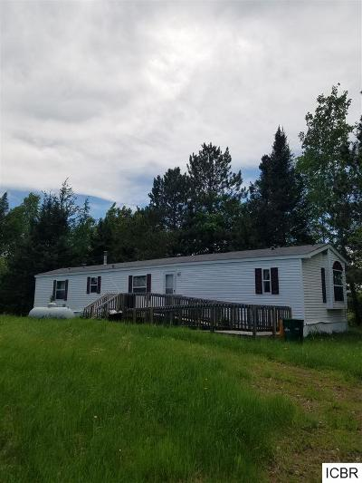 Itasca County Single Family Home For Sale: 21987 County Rd 447