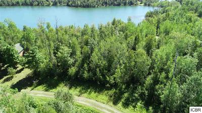 Itasca County Residential Lots & Land For Sale: Loon Call Ln