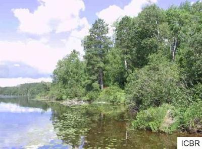 Itasca County Residential Lots & Land For Sale: 51199 East Lake Rd
