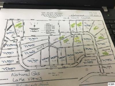 Itasca County Residential Lots & Land For Sale: Nicholas St