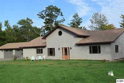 Grand Rapids Single Family Home For Sale: 19608 Crystal Springs Rd